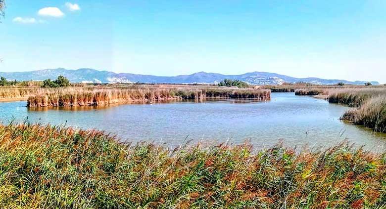 aiguamolls provincia gerona