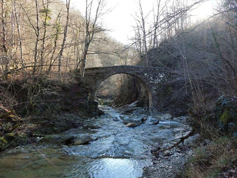 pont del salgueda