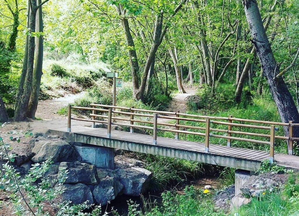 dous torreles foix puente