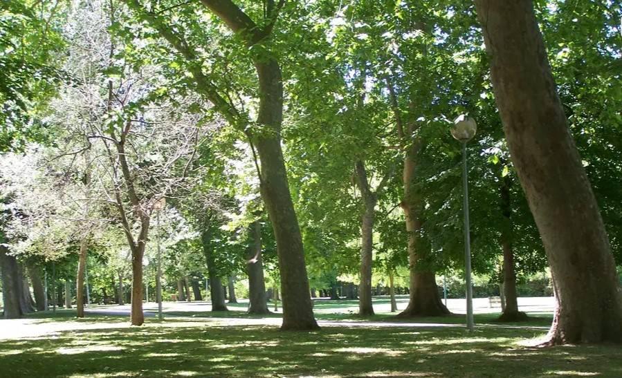 parque de estella