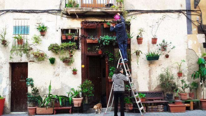 sitios para hacer fotos barcelona casa plantas