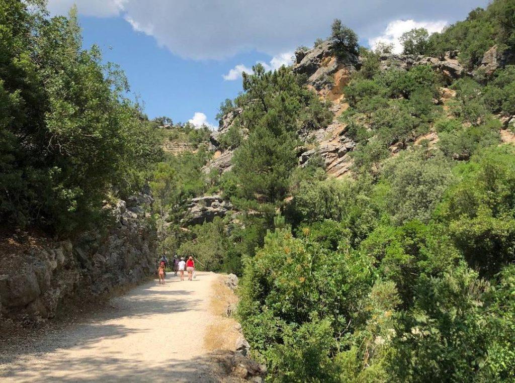 pista forestal rio borosa cazorla