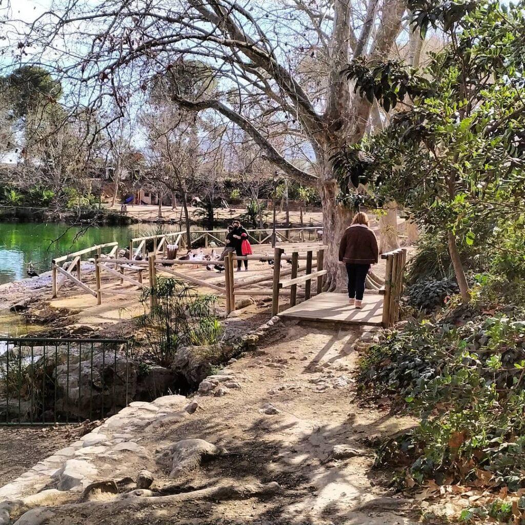 lago de anna paseo