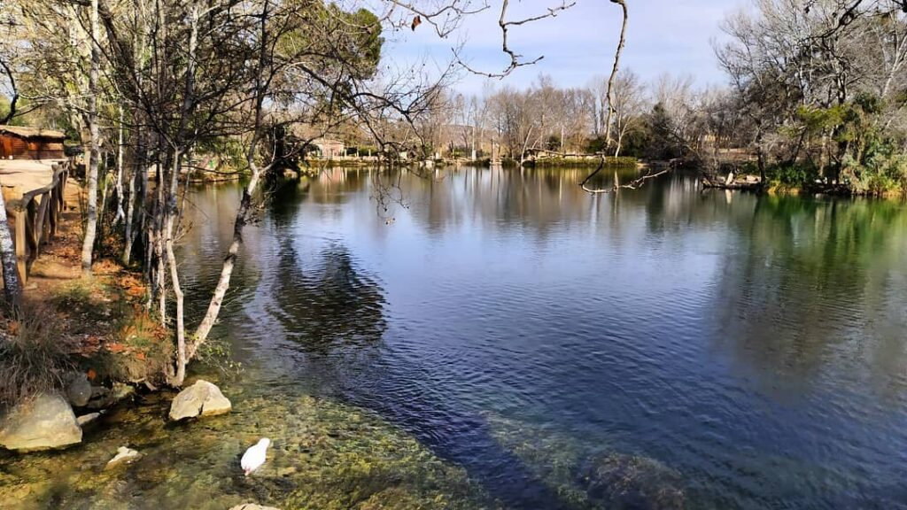 Lago de Anna que ver