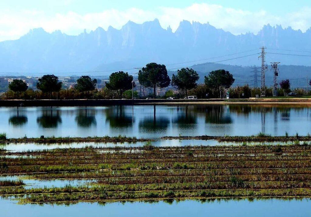 lagos de cataluña