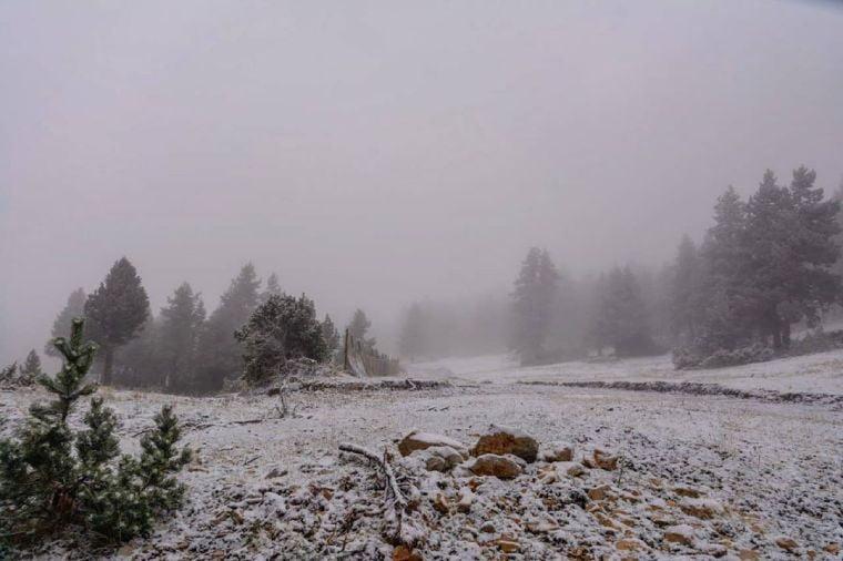 tuixent nieve